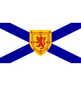 soles1 ns flag